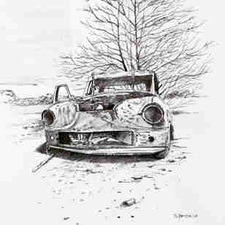 Autowrack-Hertje
