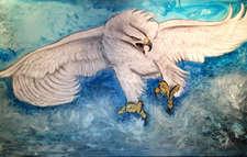 weisser Adler